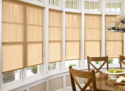 Nulite Best Buy Light Filtering Roller Shades